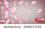 pink sakura falling petals... | Shutterstock .eps vector #1008217252