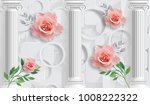 rose and columns. photo... | Shutterstock . vector #1008222322