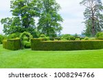 landscaped garden with topiary... | Shutterstock . vector #1008294766