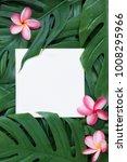 tropical top view summer... | Shutterstock . vector #1008295966