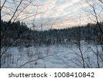 in the winter forest in the... | Shutterstock . vector #1008410842