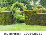 rose archway in trimmed hedge ... | Shutterstock . vector #1008428182