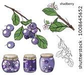 berries and jam    Shutterstock .eps vector #1008645652