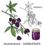 berries and jam    Shutterstock .eps vector #1008645655