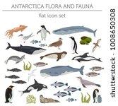 antarctic  antarctica flora and ... | Shutterstock .eps vector #1008650308