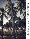 a beach in the caribbean | Shutterstock . vector #1008748885