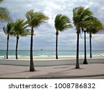 Palm trees on the seaside on Fort Lauderdale
