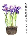 Bright Watercolor Iris Flowers...