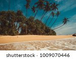 ocean coast with coconut palm... | Shutterstock . vector #1009070446