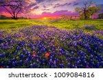 sunrise in the texas hill... | Shutterstock . vector #1009084816