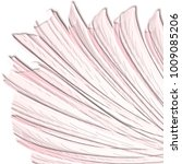 rose pink 3d veil pattern with... | Shutterstock .eps vector #1009085206