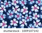 night plumeria flowers in... | Shutterstock .eps vector #1009107142