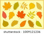 artistic set of decorative hand ... | Shutterstock .eps vector #1009121236