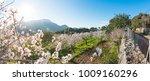 beautiful rural scene of... | Shutterstock . vector #1009160296