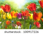 beautiful flowers | Shutterstock . vector #100917226