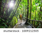 Hiking In Green Tropical Jungle ...