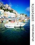 capri island  italy | Shutterstock . vector #1009245376