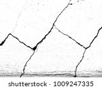 white black grey wall texture... | Shutterstock . vector #1009247335