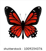 colorful butterfly . vector... | Shutterstock .eps vector #1009254376