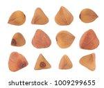 buckwheat grains isolated on a... | Shutterstock . vector #1009299655