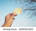 selfie of hand with potato chips   Shutterstock . vector #1009301302