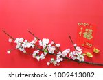 chinese new year festival   red ... | Shutterstock . vector #1009413082
