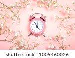 pink alarm clock and delicate... | Shutterstock . vector #1009460026