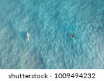 manta ray and surfer at... | Shutterstock . vector #1009494232