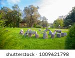stonehenge outdoor backyard... | Shutterstock . vector #1009621798