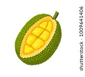 summer tropical fruits for... | Shutterstock .eps vector #1009641406