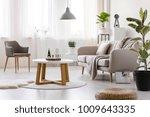 wooden table between armchair... | Shutterstock . vector #1009643335