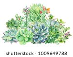 composition of succulents ... | Shutterstock . vector #1009649788