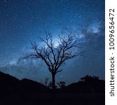 tree silhouetting the milky way   Shutterstock . vector #1009656472