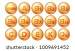 vitamin icons set. organic... | Shutterstock . vector #1009691452