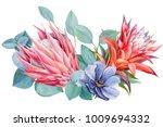 bouquet of tropical flowers ... | Shutterstock . vector #1009694332