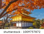 stunning fall foliage at... | Shutterstock . vector #1009757872