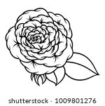 flower rose  black and white.... | Shutterstock .eps vector #1009801276