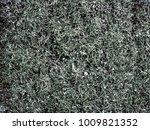 metal shavings background ... | Shutterstock . vector #1009821352