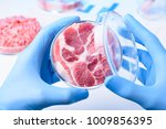 meat sample in open laboratory... | Shutterstock . vector #1009856395