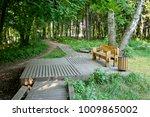 wooden bench in victory park ... | Shutterstock . vector #1009865002