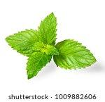 fresh spearmint leaves isolated ... | Shutterstock . vector #1009882606