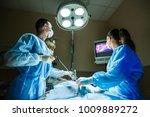 veterinarian doctor in... | Shutterstock . vector #1009889272