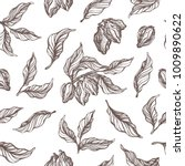seamless pattern of cocoa tree... | Shutterstock .eps vector #1009890622