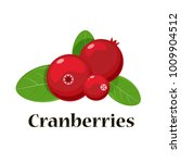 cranberries isolated icon. ... | Shutterstock . vector #1009904512