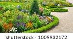 lush flower beds in the summer... | Shutterstock . vector #1009932172