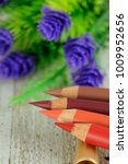 colorful  lip pencils with... | Shutterstock . vector #1009952656