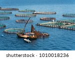 Fish Farming On The Sea. Corfu...