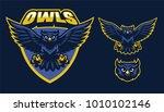sport style of owl mascot | Shutterstock .eps vector #1010102146