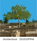 fig tree  ficus carica l.  in... | Shutterstock .eps vector #1010109946