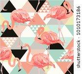 jungle pink flamingos....   Shutterstock .eps vector #1010173186